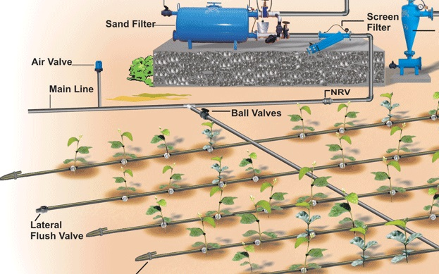 micro irrigation systems market to reach us 817 bn by credence research mct - Irrigation Systems